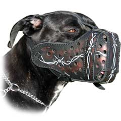 Exclusive top-grade dog muzzle
