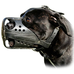 Comfortable exclusive leather dog muzzle