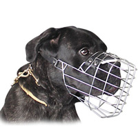 Wire Basket Dog Muzzle for Cane Corso-Sicilian Branchiero Muzzle