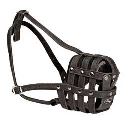 Italian Mastiff lightweight leather muzzle