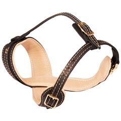 Well ventilated leather dog muzzle