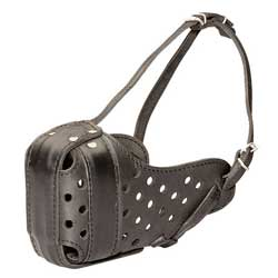 Well-made leather dog muzzle