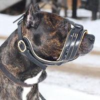 Royal Nappa Leather Dog Muzzle