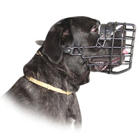 Cane Corso Wire Dog MUZZLE for winter rubber cover