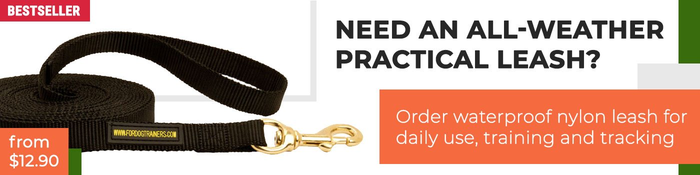 Nylon dog leash for training and tracking