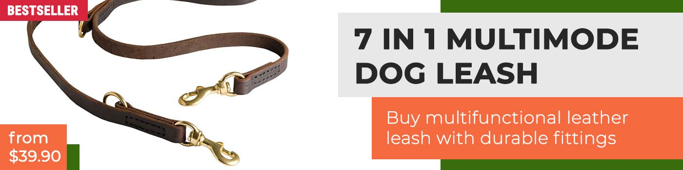 Convertible Leather Dog Leash Multi Functional