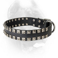 Fashionable Leather Dog Collar with Silverish Studs