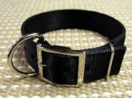 2 Ply Nylon Dog Collar for Cane Corso-Wide Nylon Collar